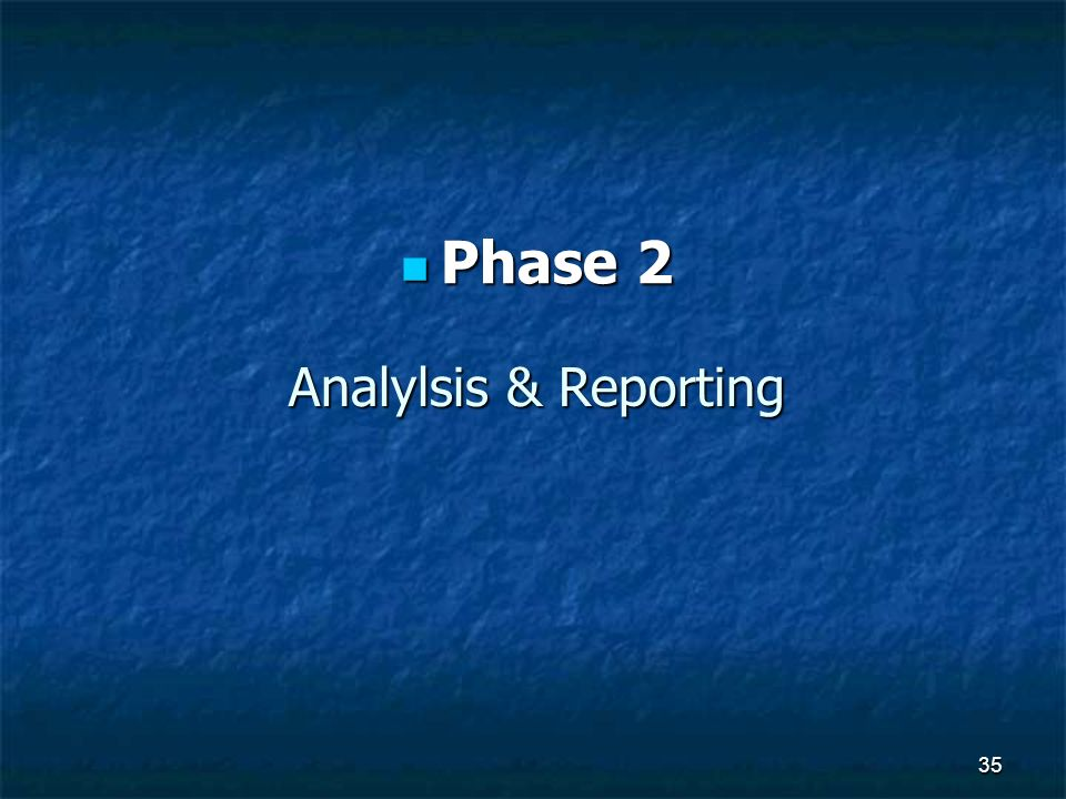Phase 2 Analylsis & Reporting