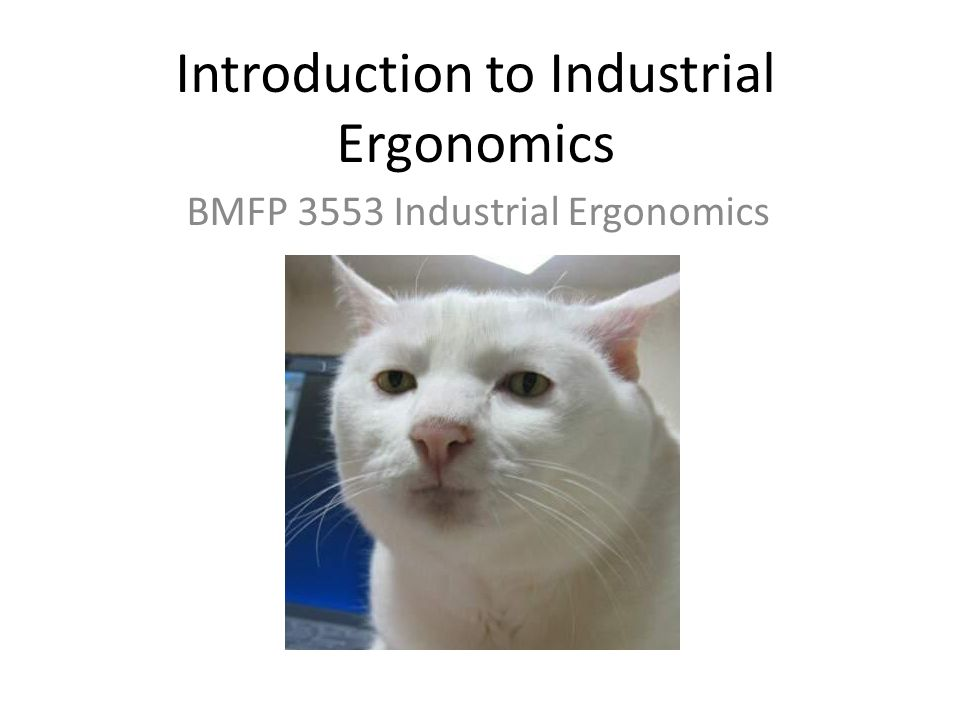 Introduction to Industrial Ergonomics