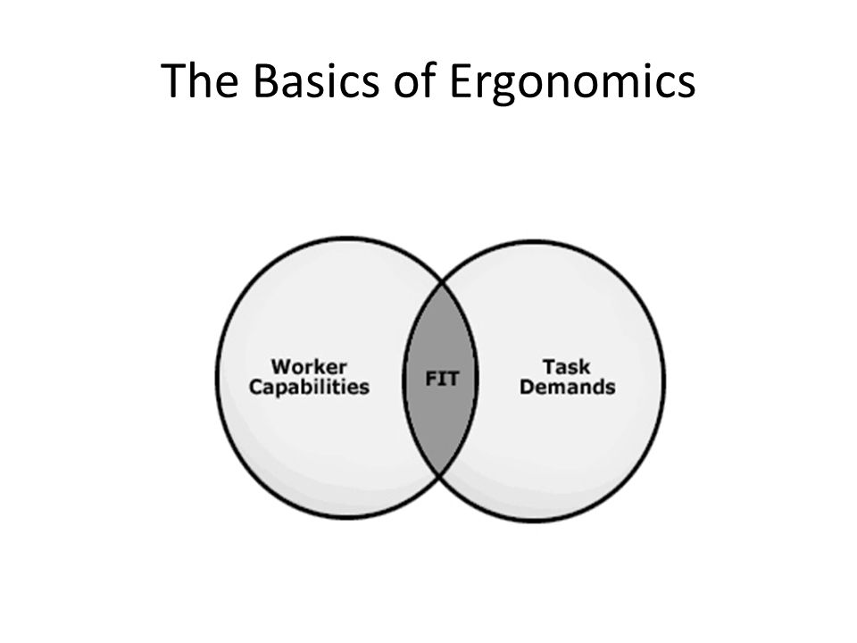 The Basics of Ergonomics