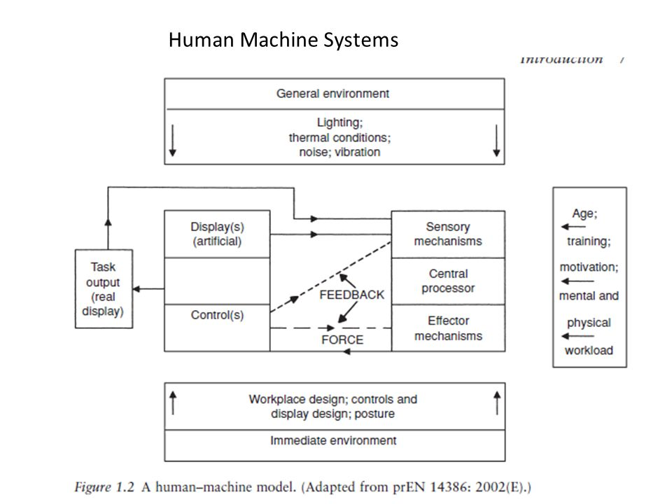 Human Machine Systems Effectors : hands feet and voice ( things that make physical activity possible)