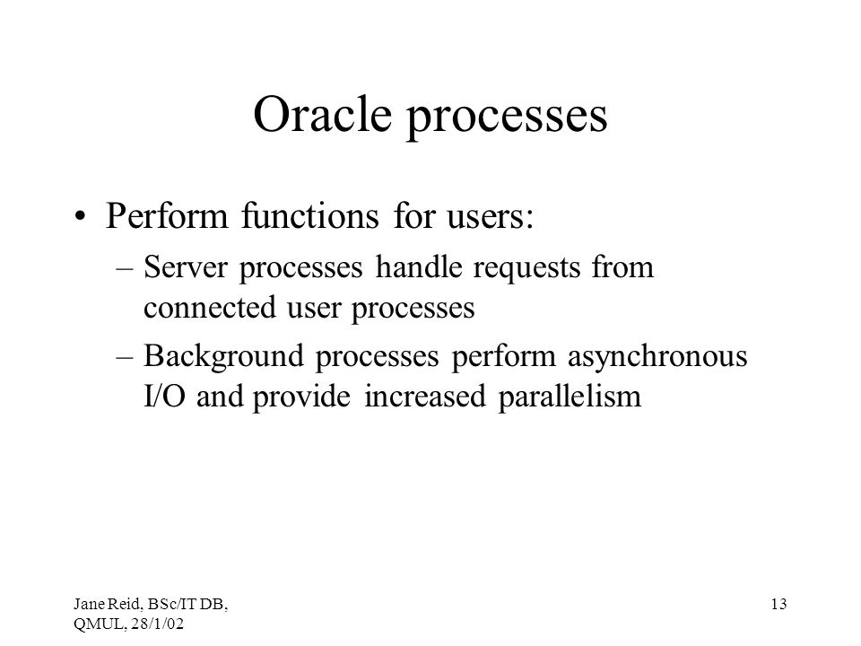 Oracle processes Perform functions for users: