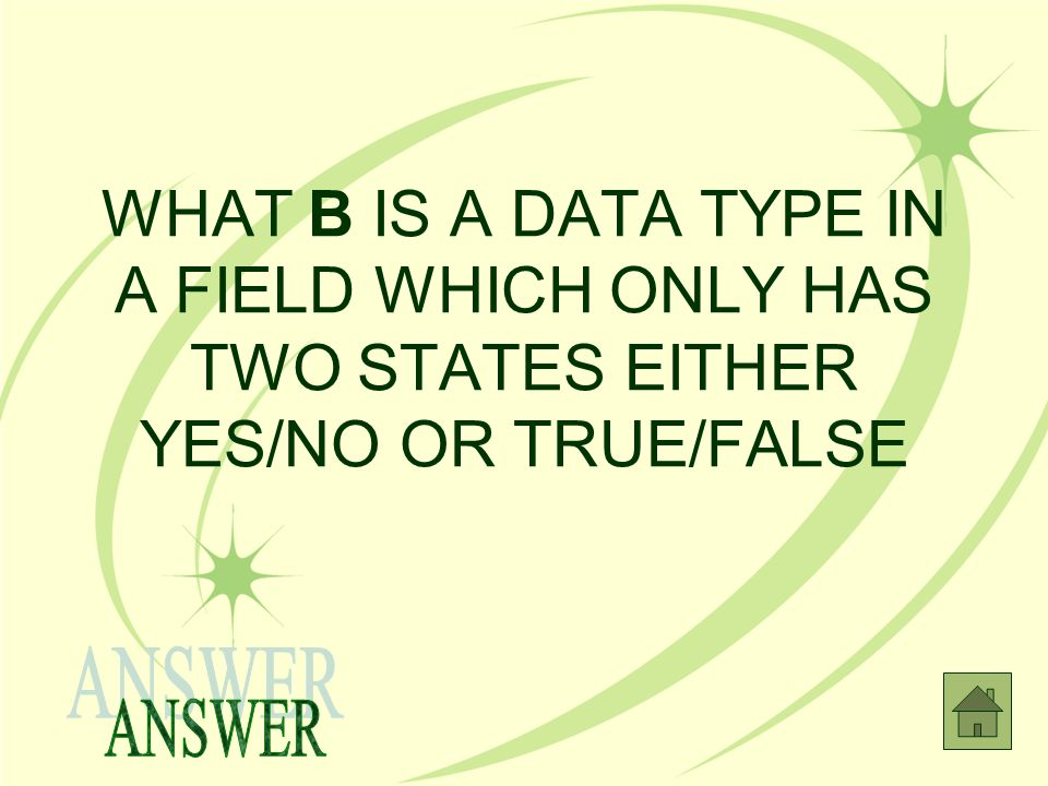 WHAT B IS A DATA TYPE IN A FIELD WHICH ONLY HAS TWO STATES EITHER YES/NO OR TRUE/FALSE