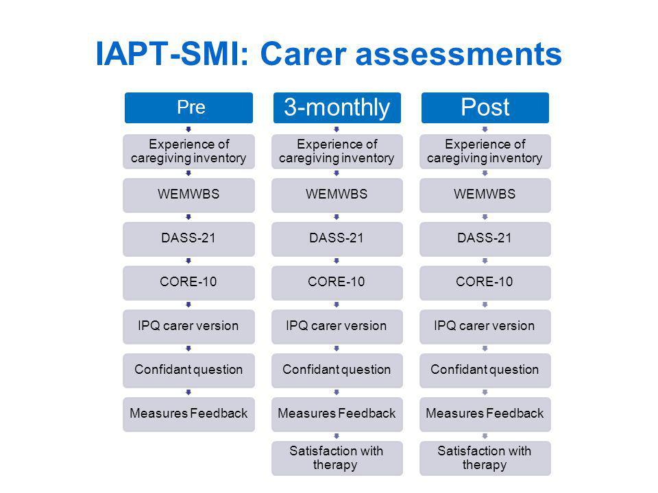 IAPT-SMI: Carer assessments