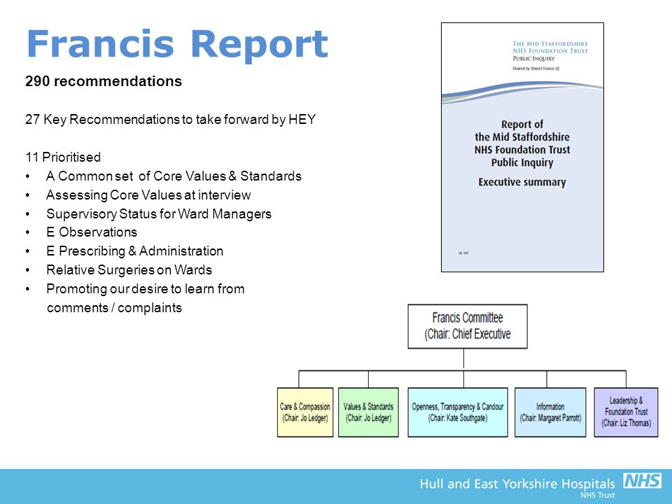 Francis Report 290 recommendations