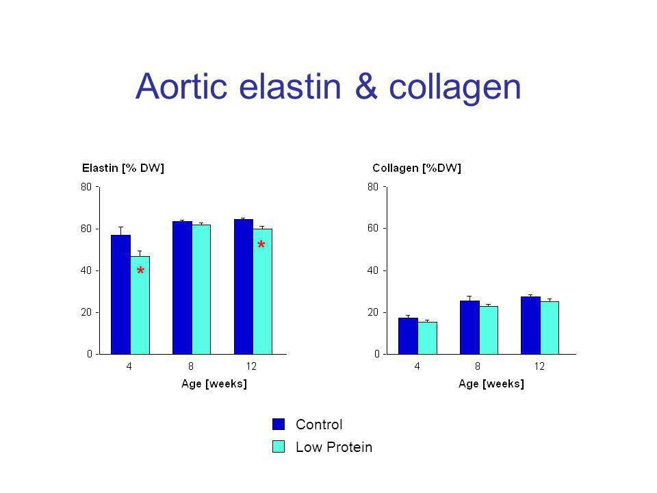 Aortic elastin & collagen