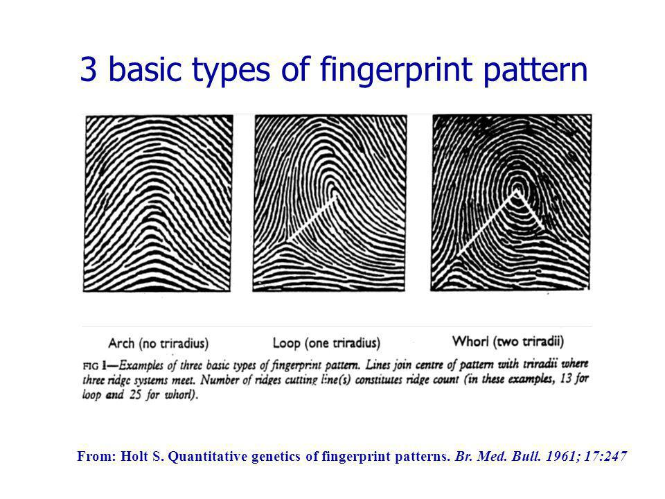 3 basic types of fingerprint pattern