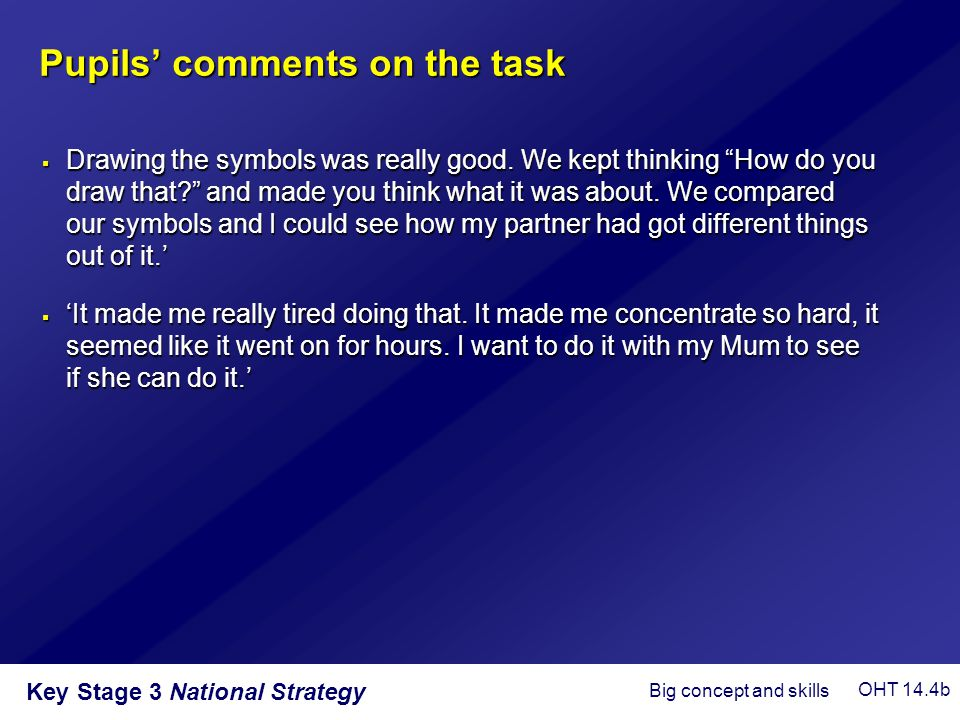 Pupils' comments on the task