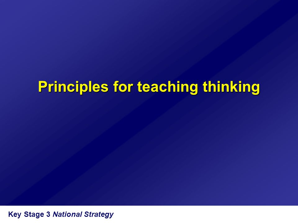 Principles for teaching thinking