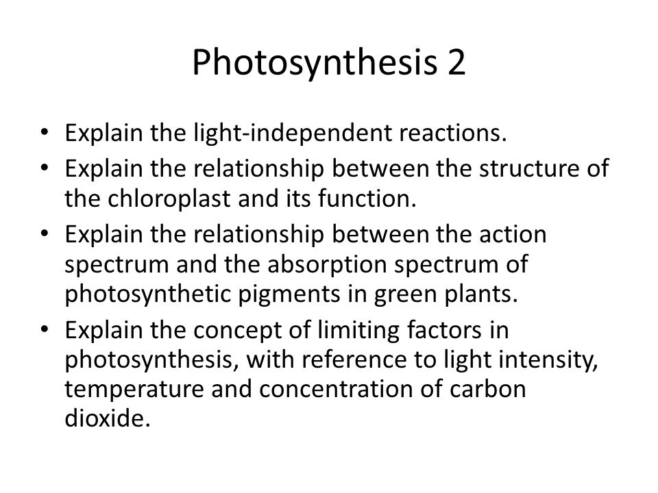 Photosynthesis 2 Explain the light-independent reactions.