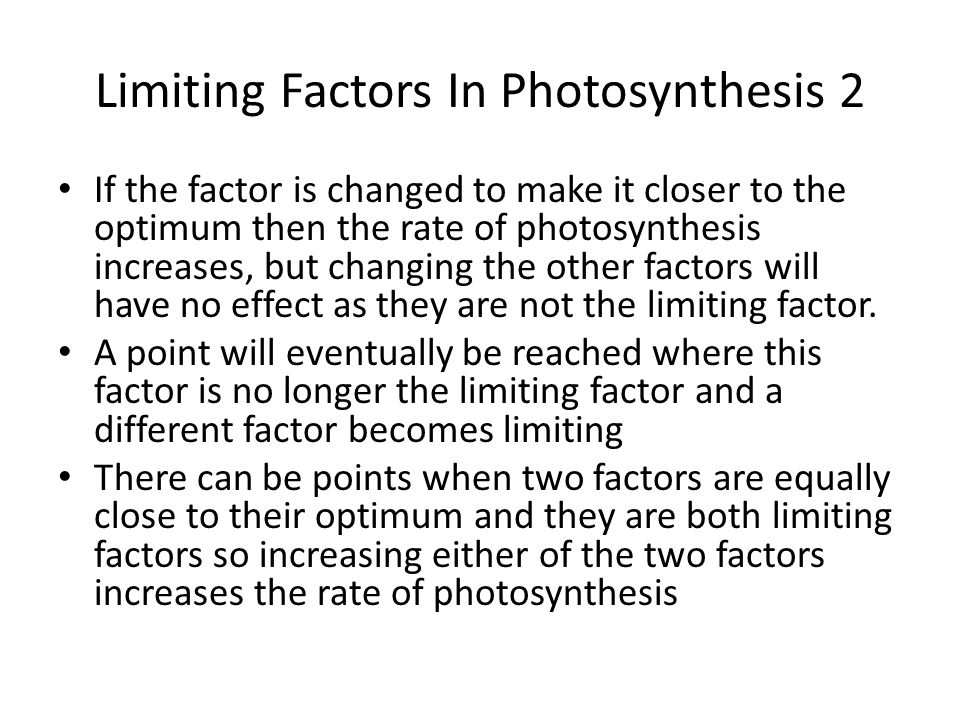 Limiting Factors In Photosynthesis 2