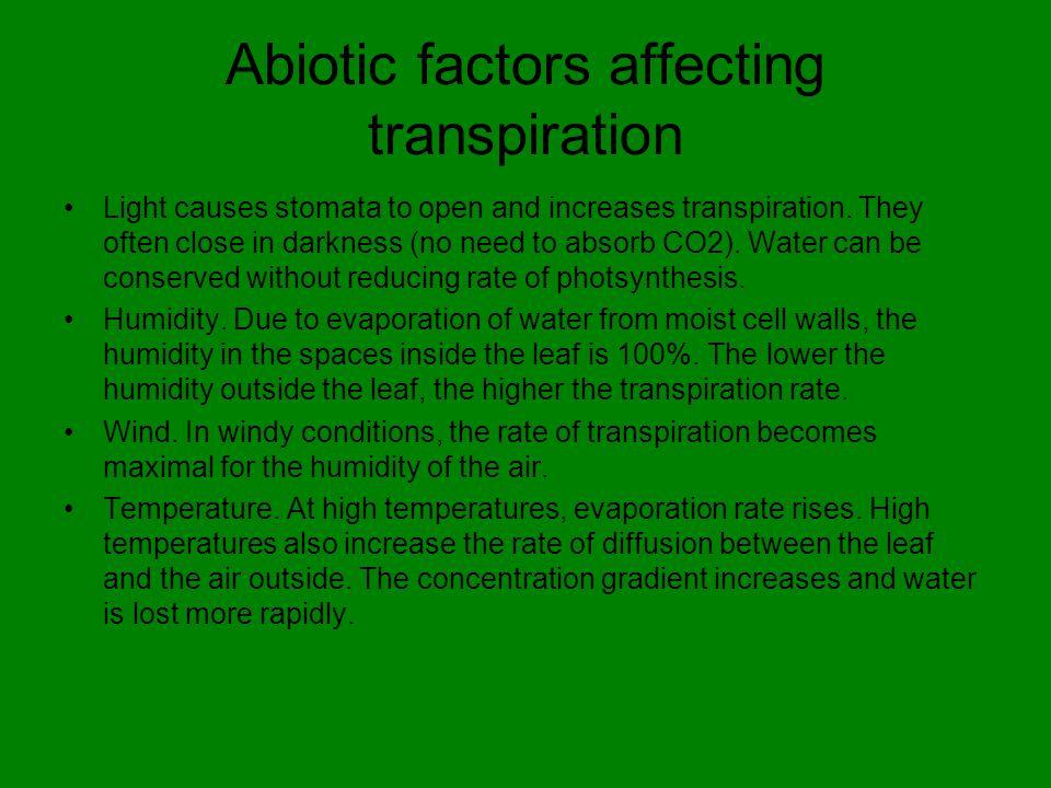 Abiotic factors affecting transpiration