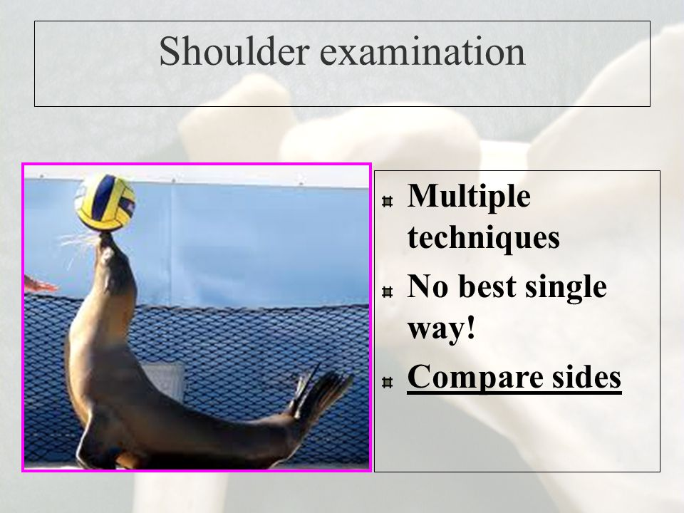 Shoulder examination Multiple techniques No best single way!