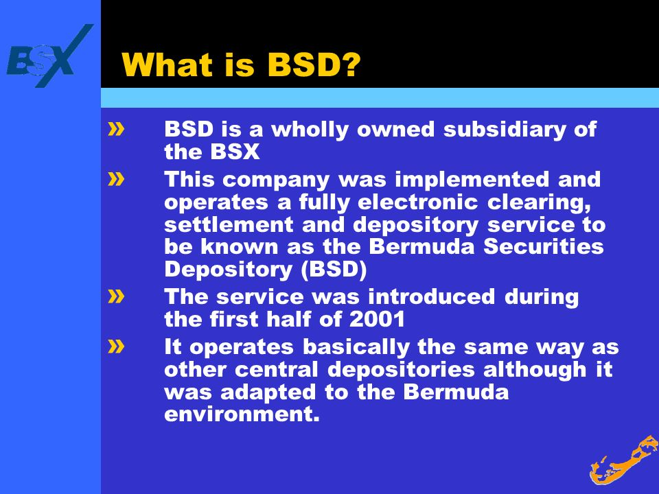 What is BSD BSD is a wholly owned subsidiary of the BSX