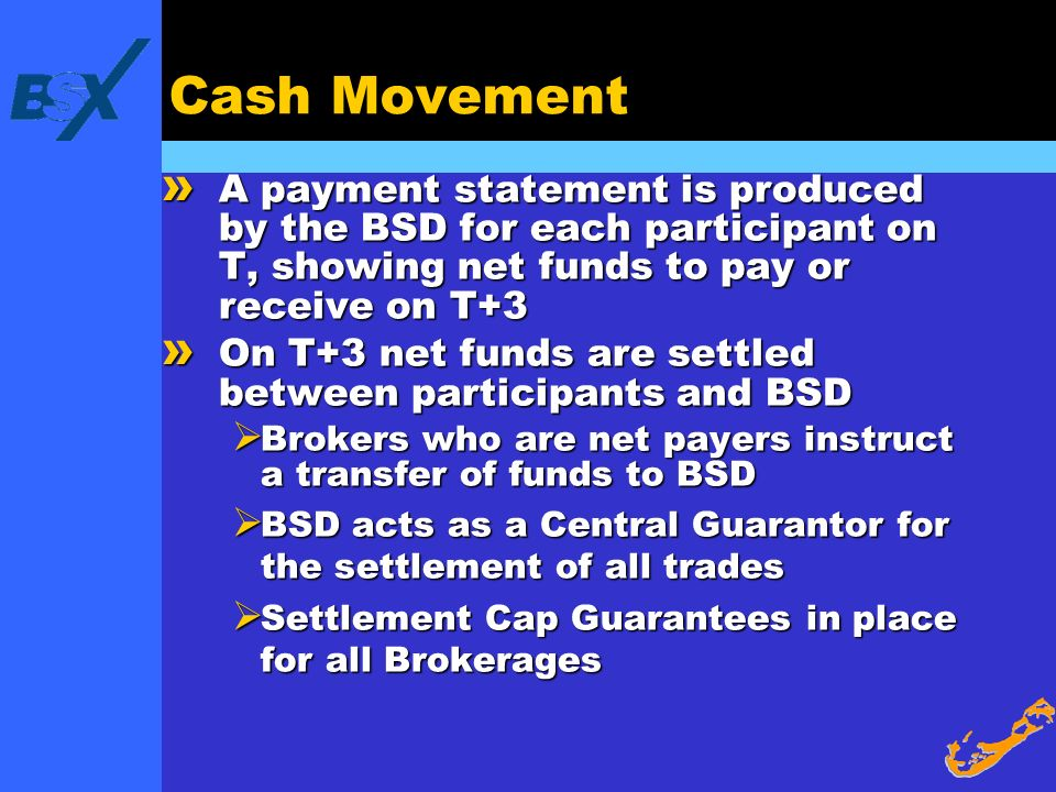 Cash Movement A payment statement is produced by the BSD for each participant on T, showing net funds to pay or receive on T+3.