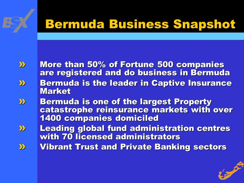 Bermuda Business Snapshot