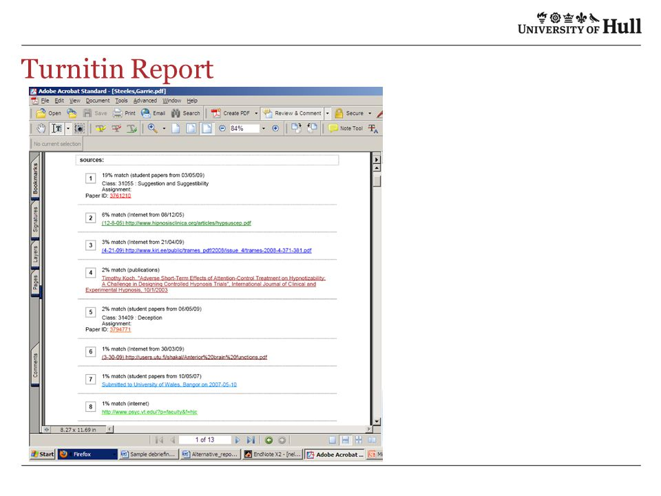 Turnitin Report
