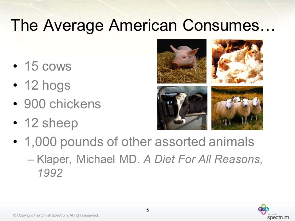 The Average American Consumes…