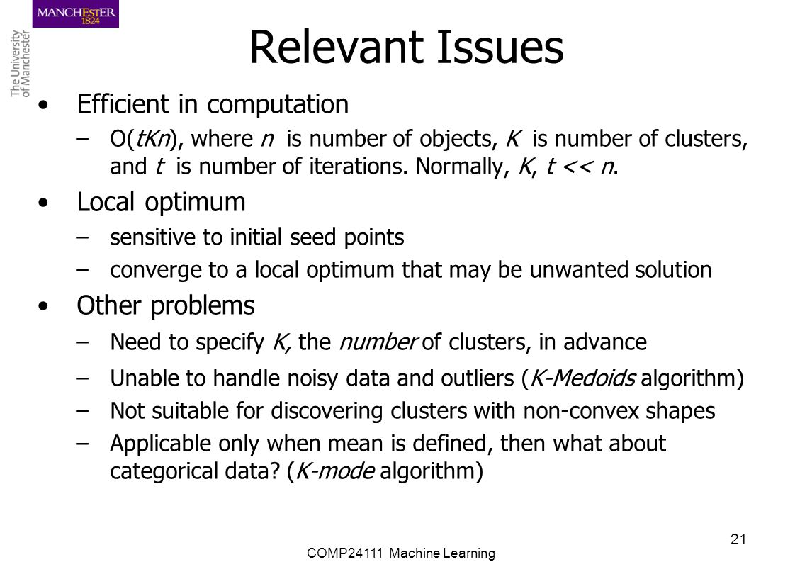 Relevant Issues Efficient in computation Local optimum Other problems