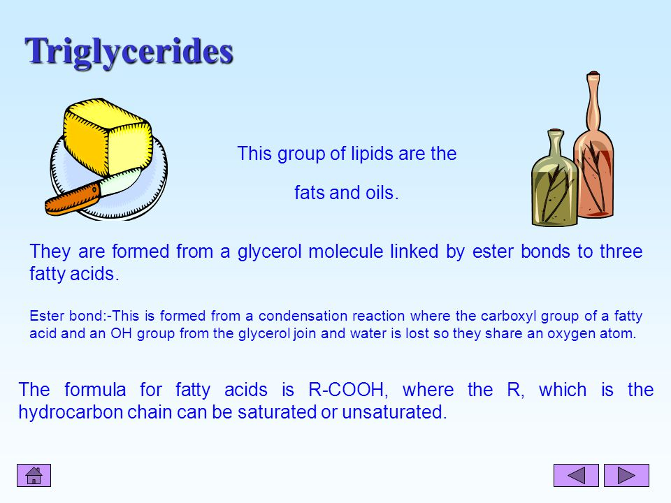 This group of lipids are the