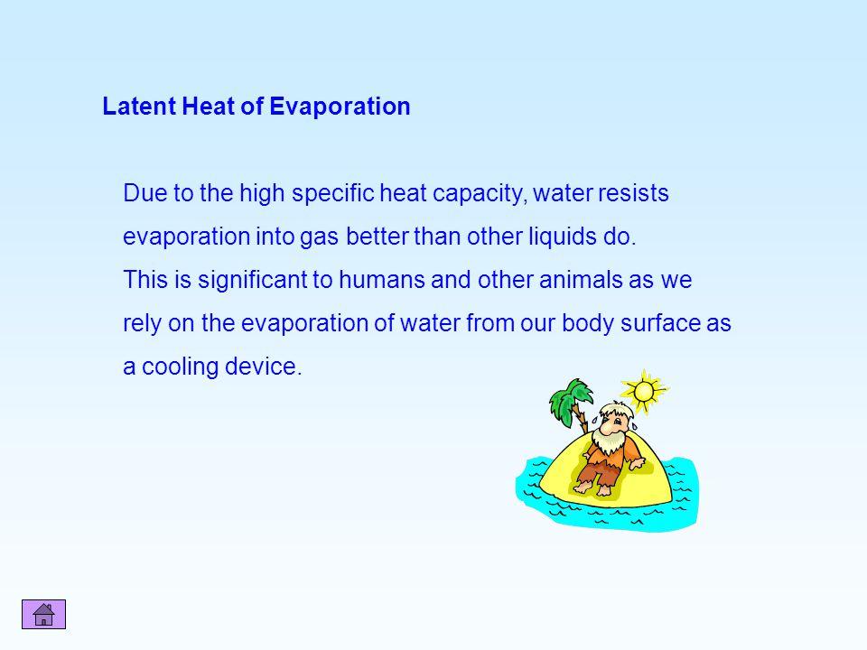 Latent Heat of Evaporation