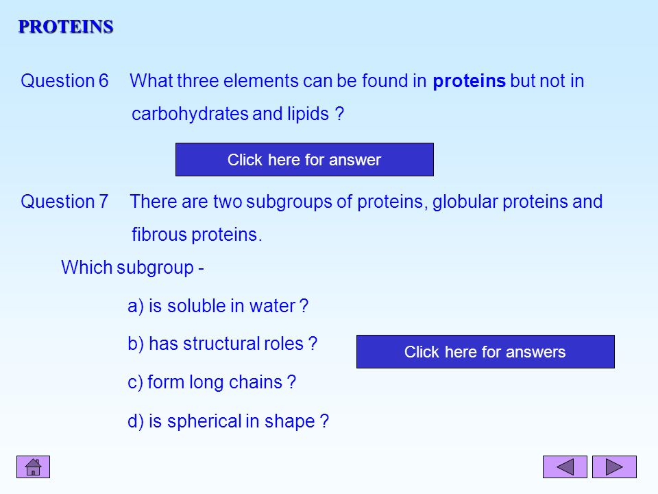 Question 6 What three elements can be found in proteins but not in