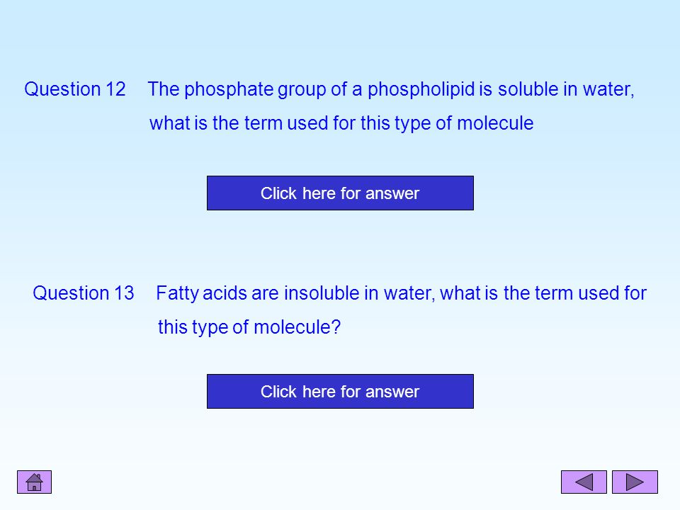 Question 12 The phosphate group of a phospholipid is soluble in water,