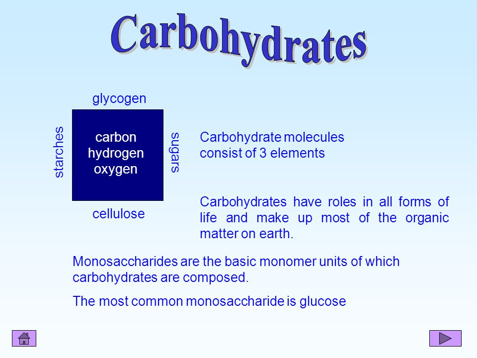 Carbohydrates starches cellulose glycogen sugars carbon hydrogen