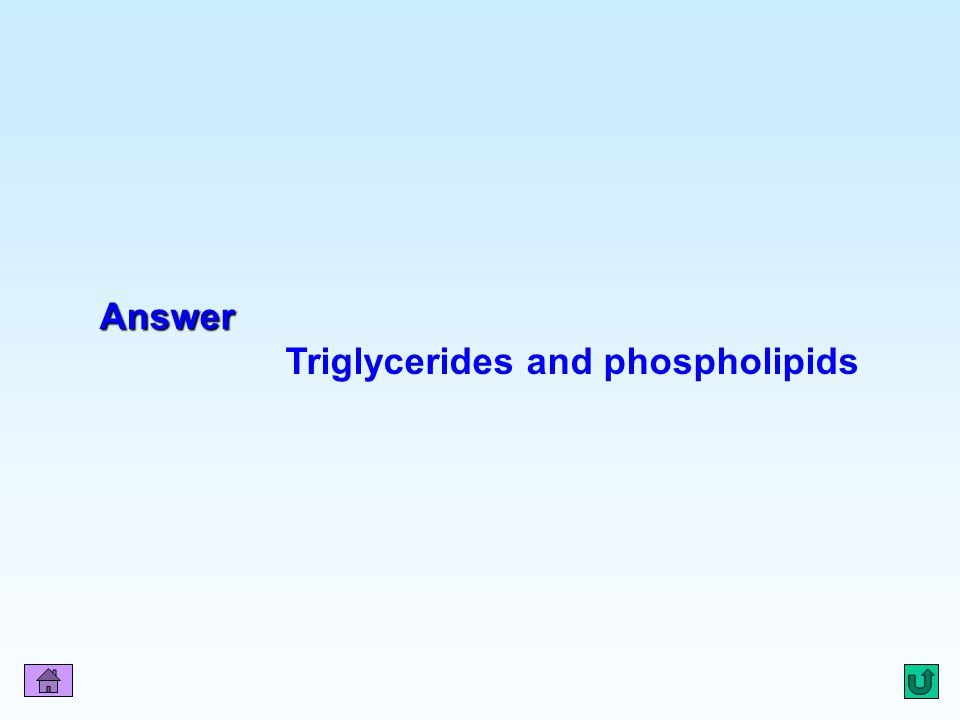 Triglycerides and phospholipids