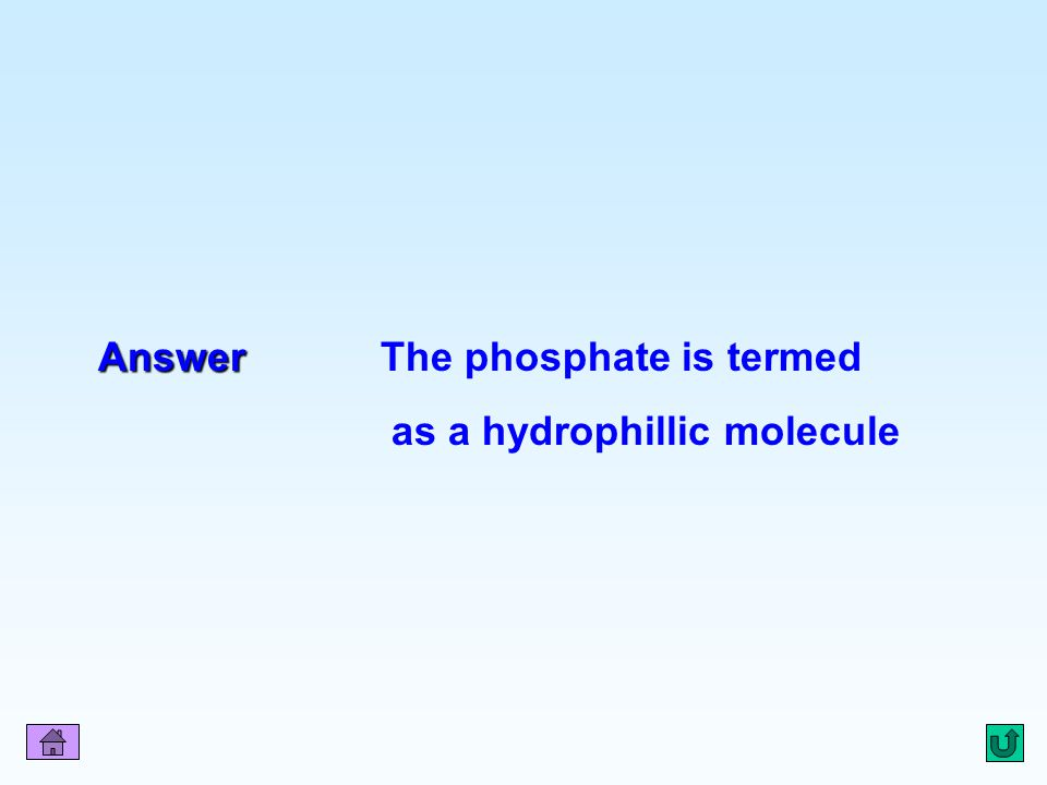Answer The phosphate is termed as a hydrophillic molecule