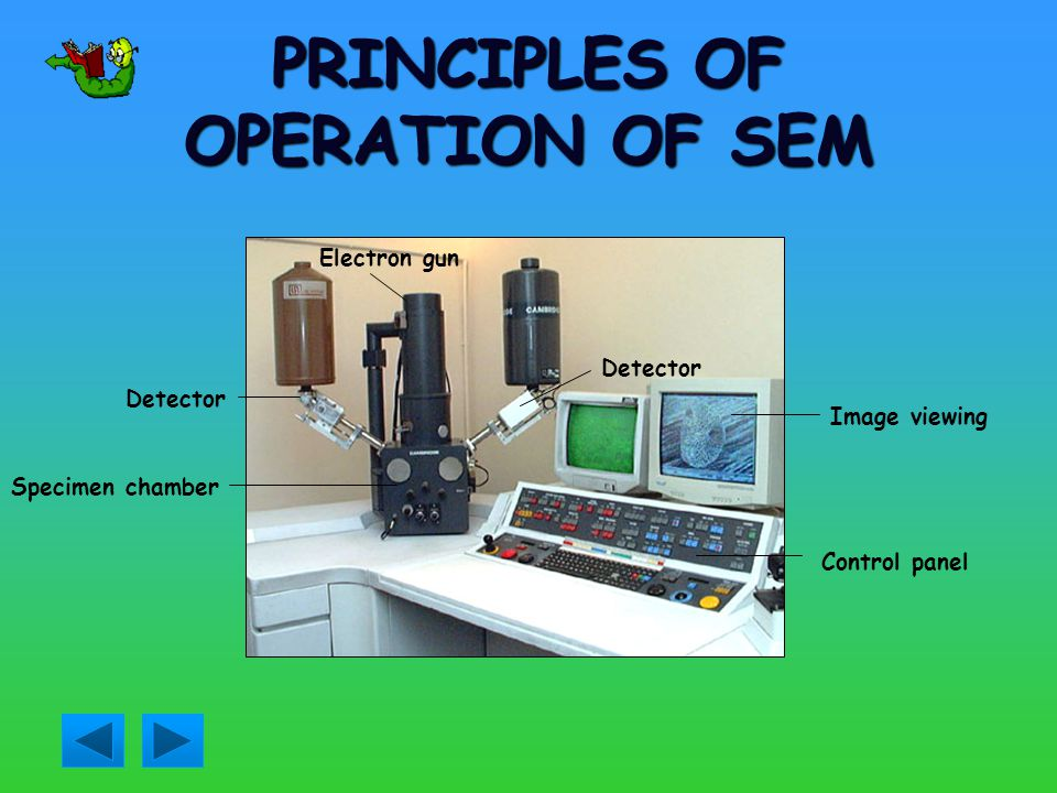 PRINCIPLES OF OPERATION OF SEM