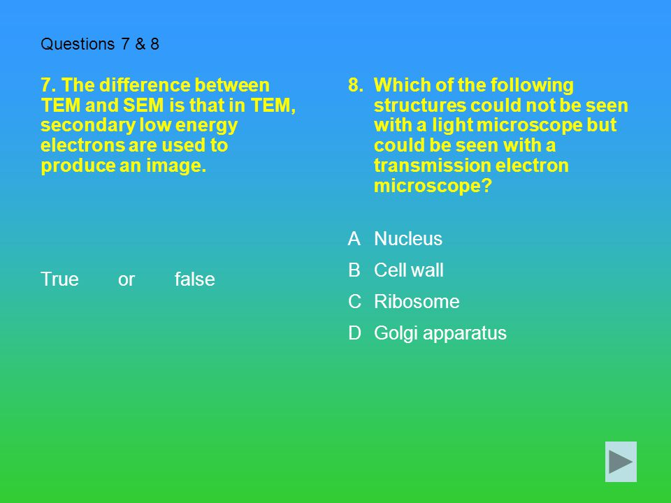 Questions 7 & 8 7. The difference between TEM and SEM is that in TEM, secondary low energy electrons are used to produce an image.