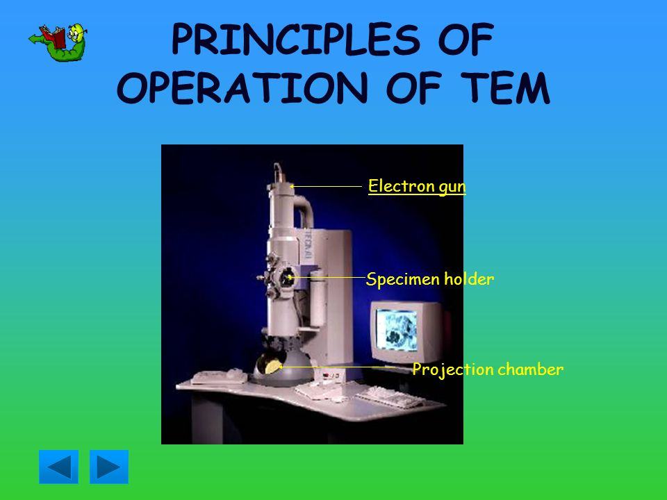 PRINCIPLES OF OPERATION OF TEM