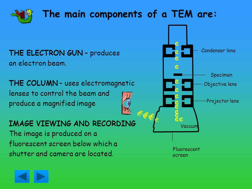 The main components of a TEM are: