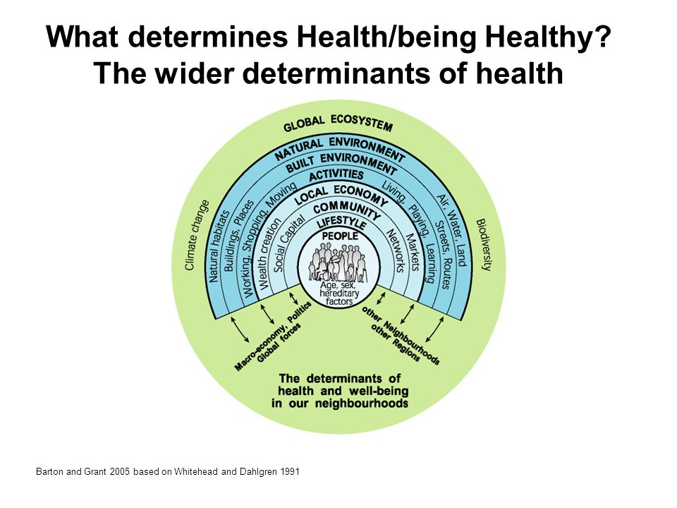 What determines Health/being Healthy The wider determinants of health
