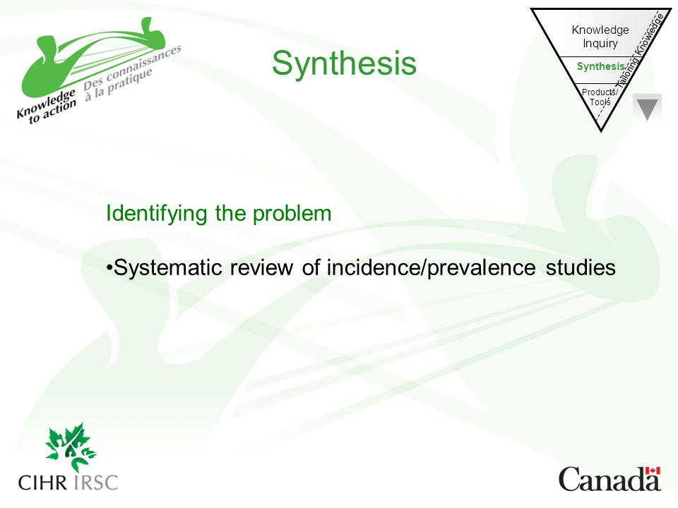 Synthesis Identifying the problem