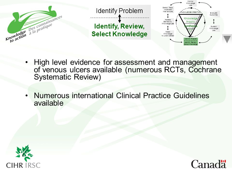Numerous international Clinical Practice Guidelines available