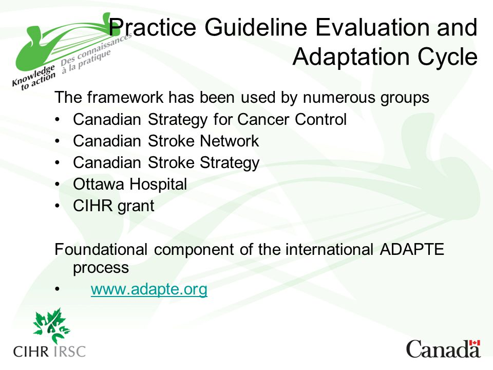 Practice Guideline Evaluation and Adaptation Cycle
