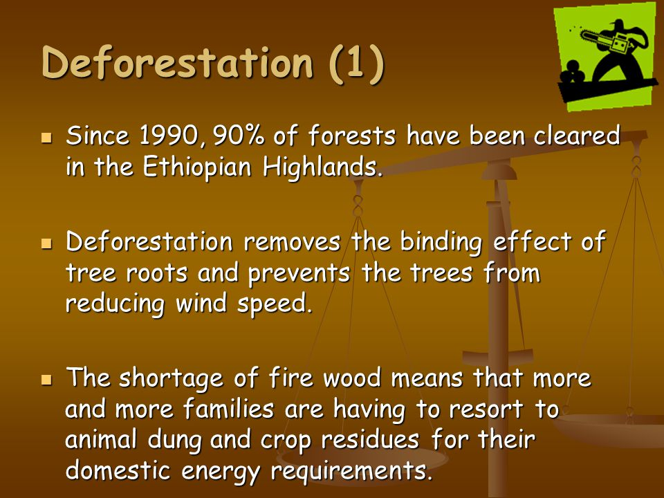Deforestation (1) Since 1990, 90% of forests have been cleared in the Ethiopian Highlands.