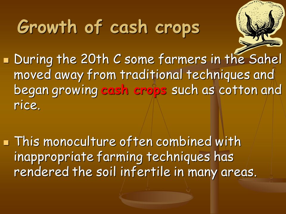 Growth of cash crops