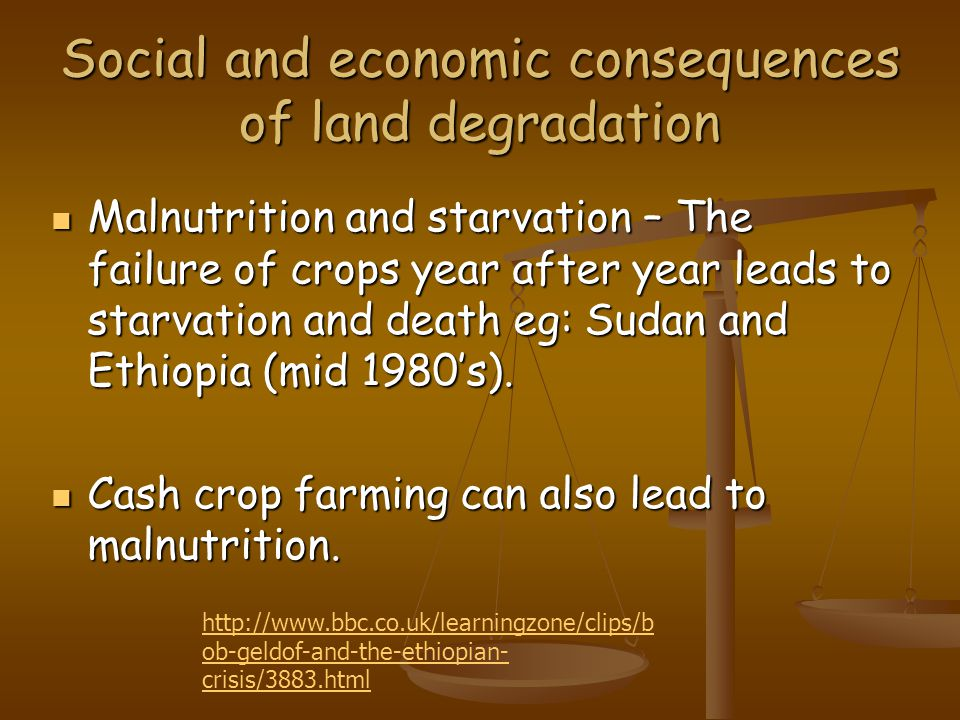 Social and economic consequences of land degradation