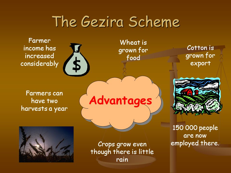 The Gezira Scheme Advantages Farmer income has increased considerably
