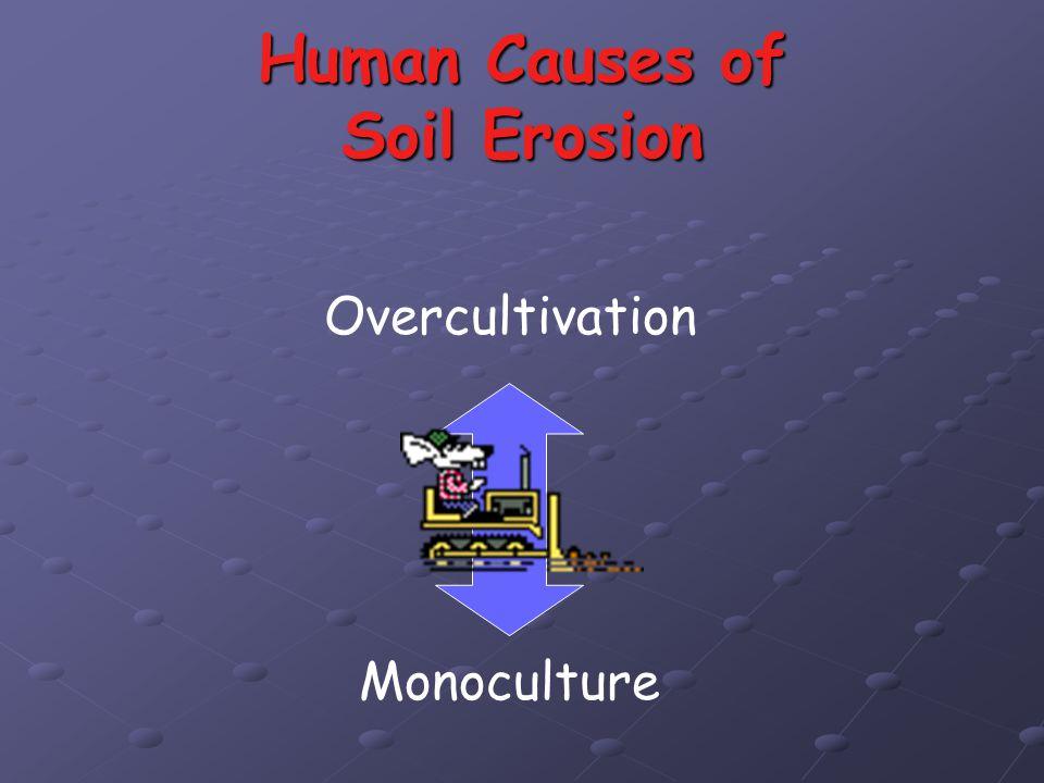 Human Causes of Soil Erosion