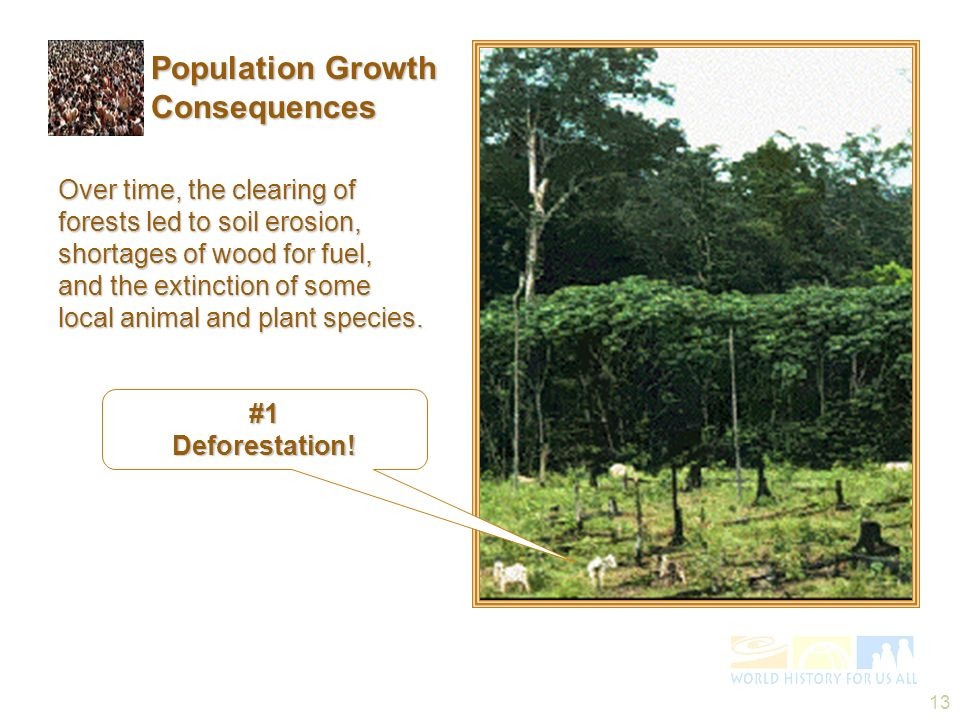 Population Growth Consequences