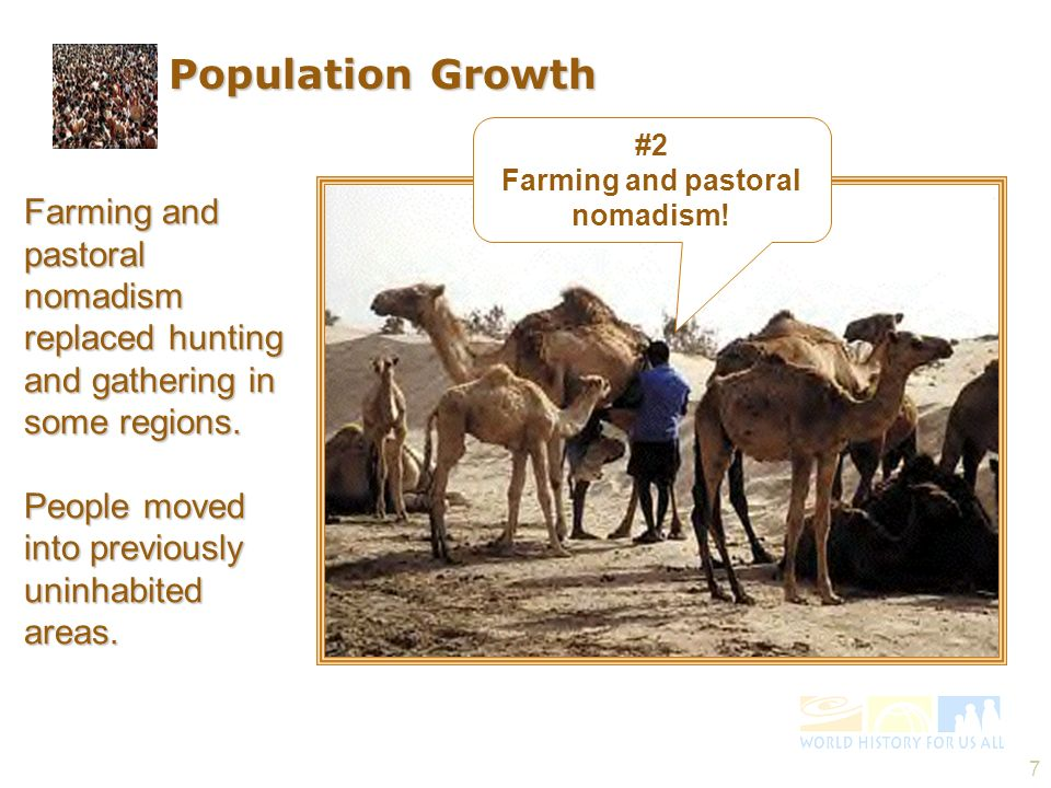Farming and pastoral nomadism!