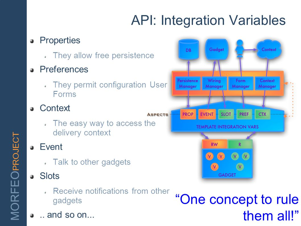 API: Integration Variables