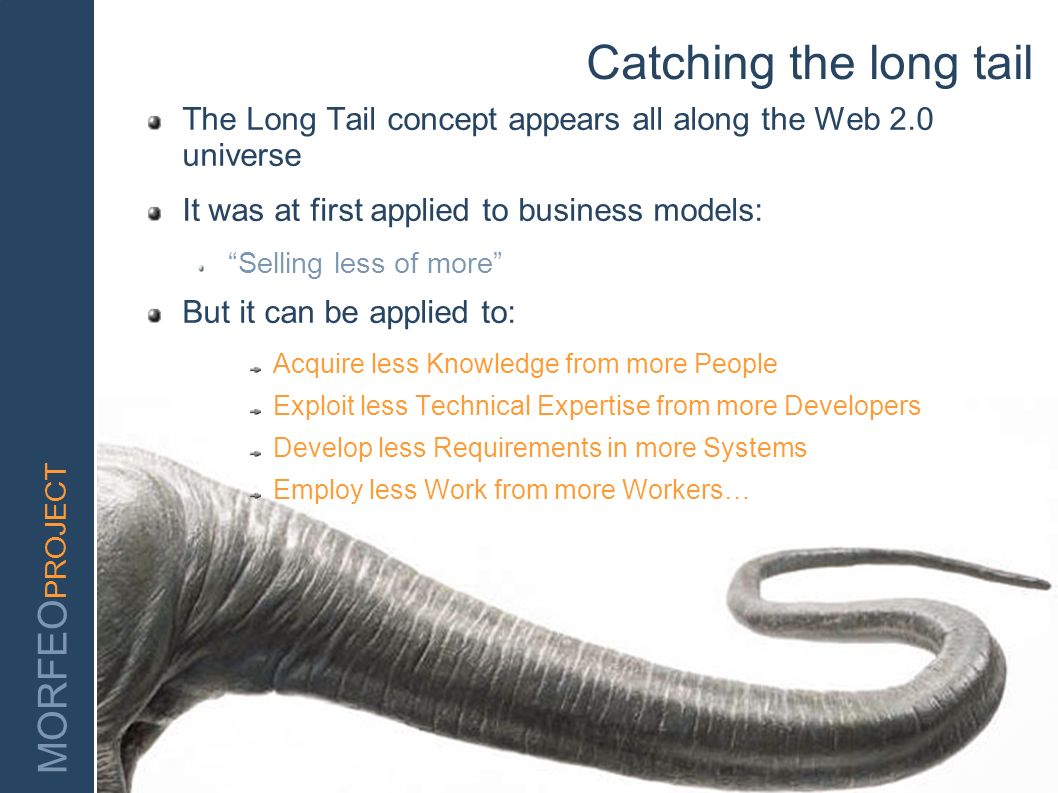 Catching the long tail The Long Tail concept appears all along the Web 2.0 universe. It was at first applied to business models: