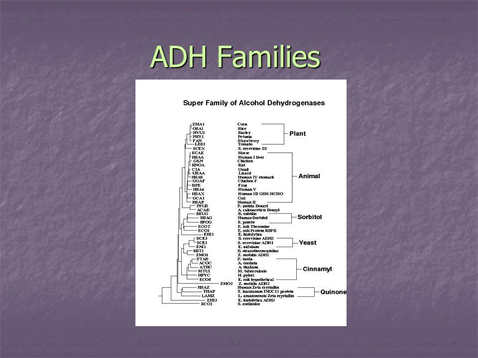 ADH Families