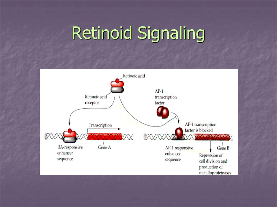 Retinoid Signaling