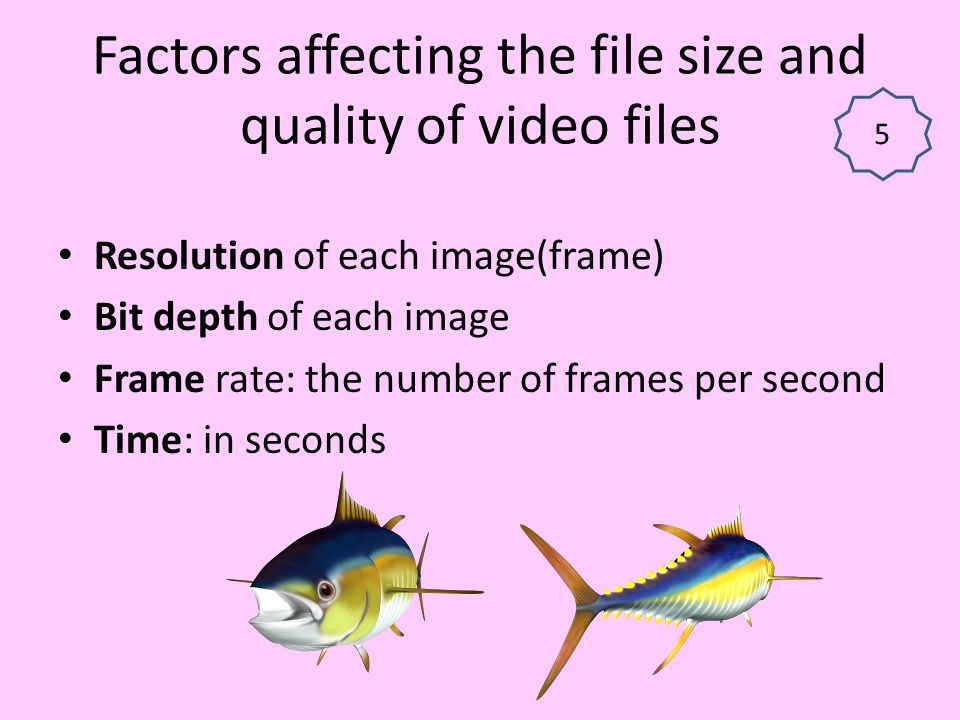 Factors affecting the file size and quality of video files