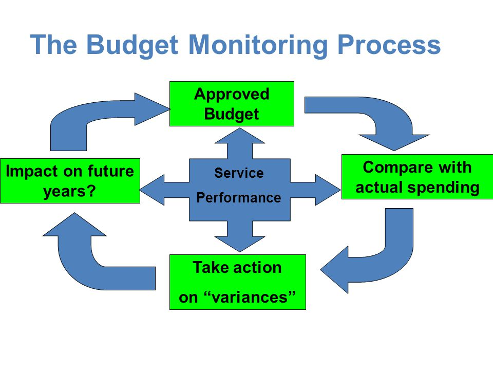 The Budget Monitoring Process